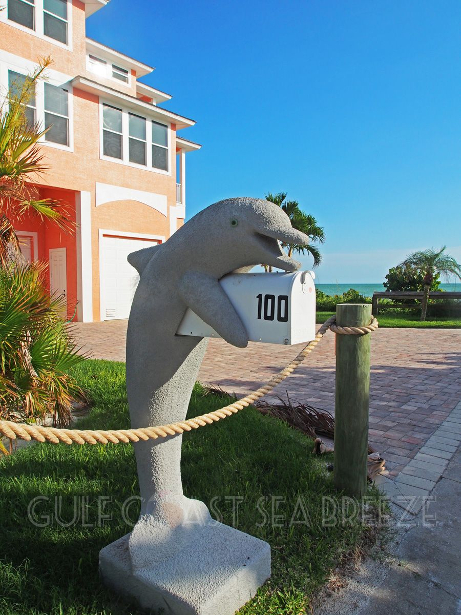cute dolphin mailbox fort myers