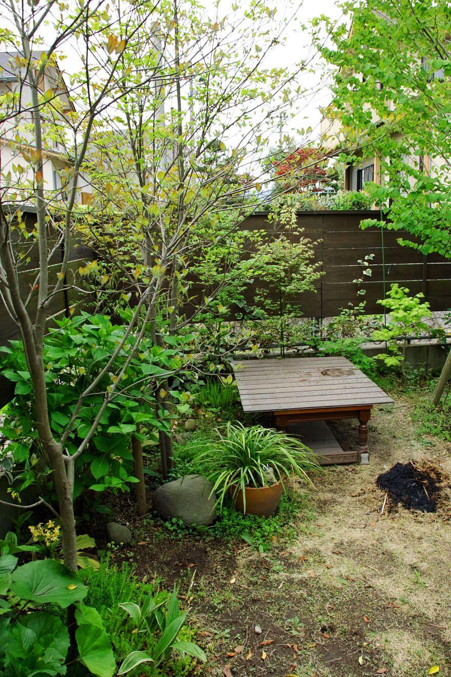 雑木の庭6 オークションで購入しても大丈夫です 庭 庭 木 庭 づくり
