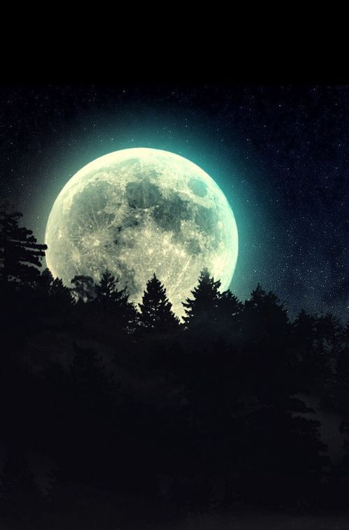 blue moon ~ | Moonlight | Moon pictures, Super moon, Mystic moon