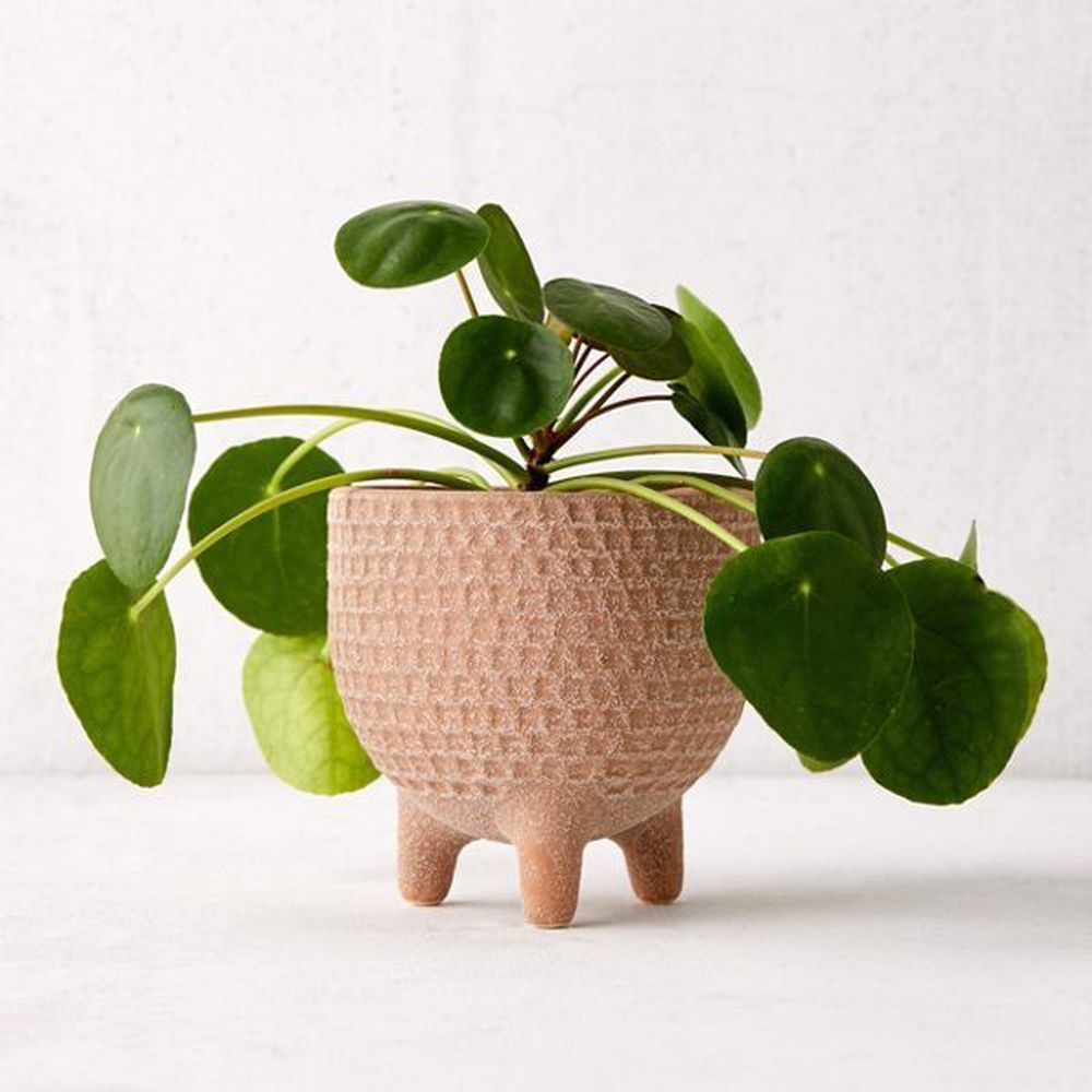 15 irresistible planters for your greenery is part of Small potted plants, Flower planters, Planters, Best potted plants, Potted plants outdoor, Potted plants patio - We've rounded up all sorts of charming planters, from the architectural and understated to the bright and whimsical