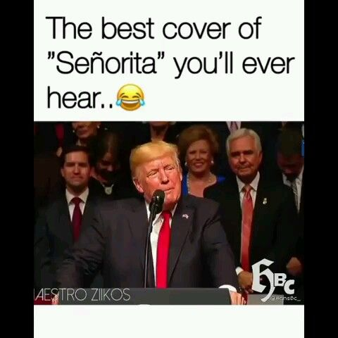 Photo of The best cover of senorita. You ever hear