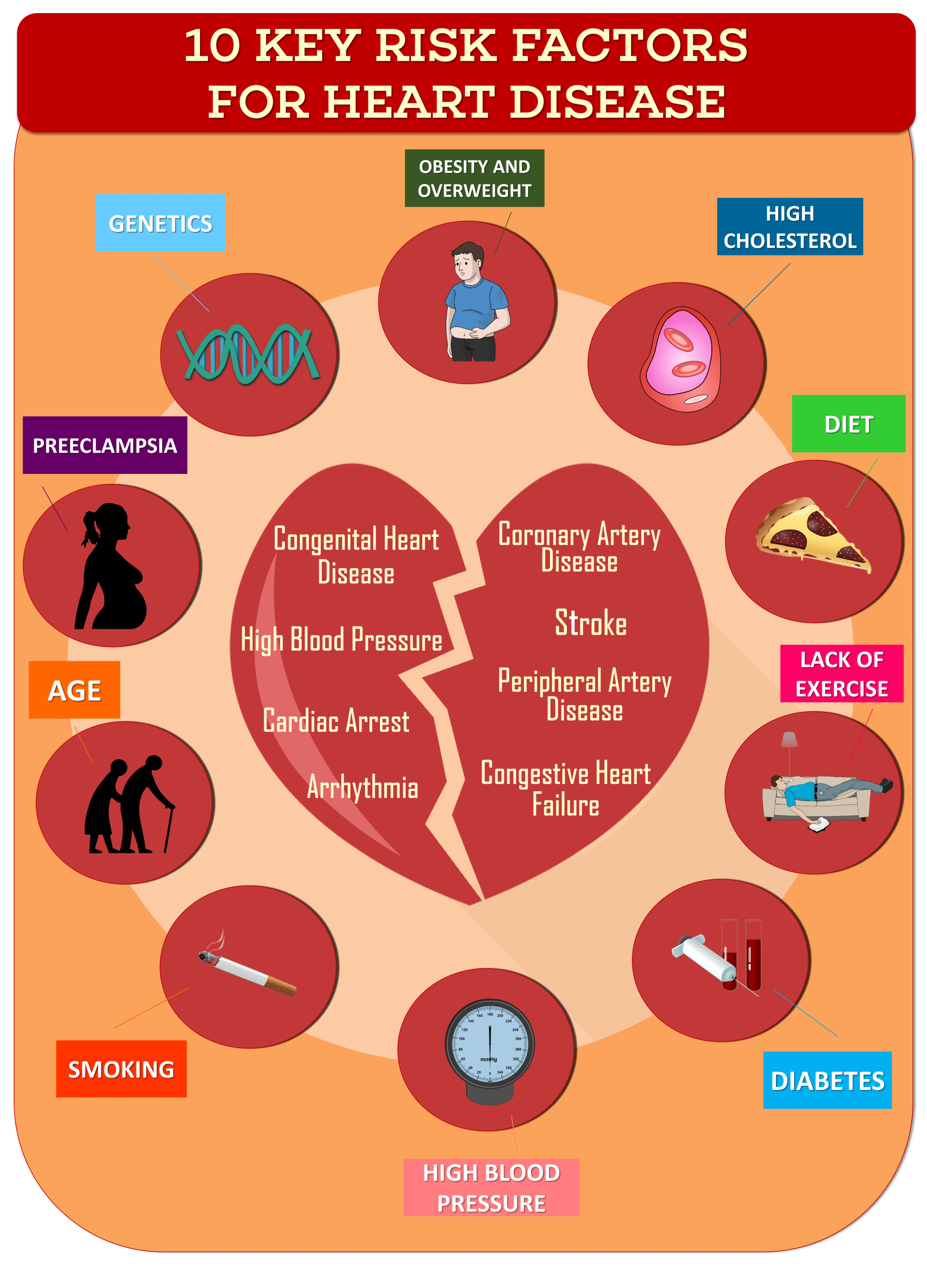 Key Risk Factors For Heart Disease Infographic Heart