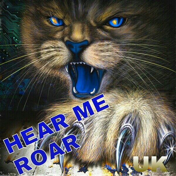UK ALL THE WAY !!!!! | Wildcat Wallpapers | Pinterest ...