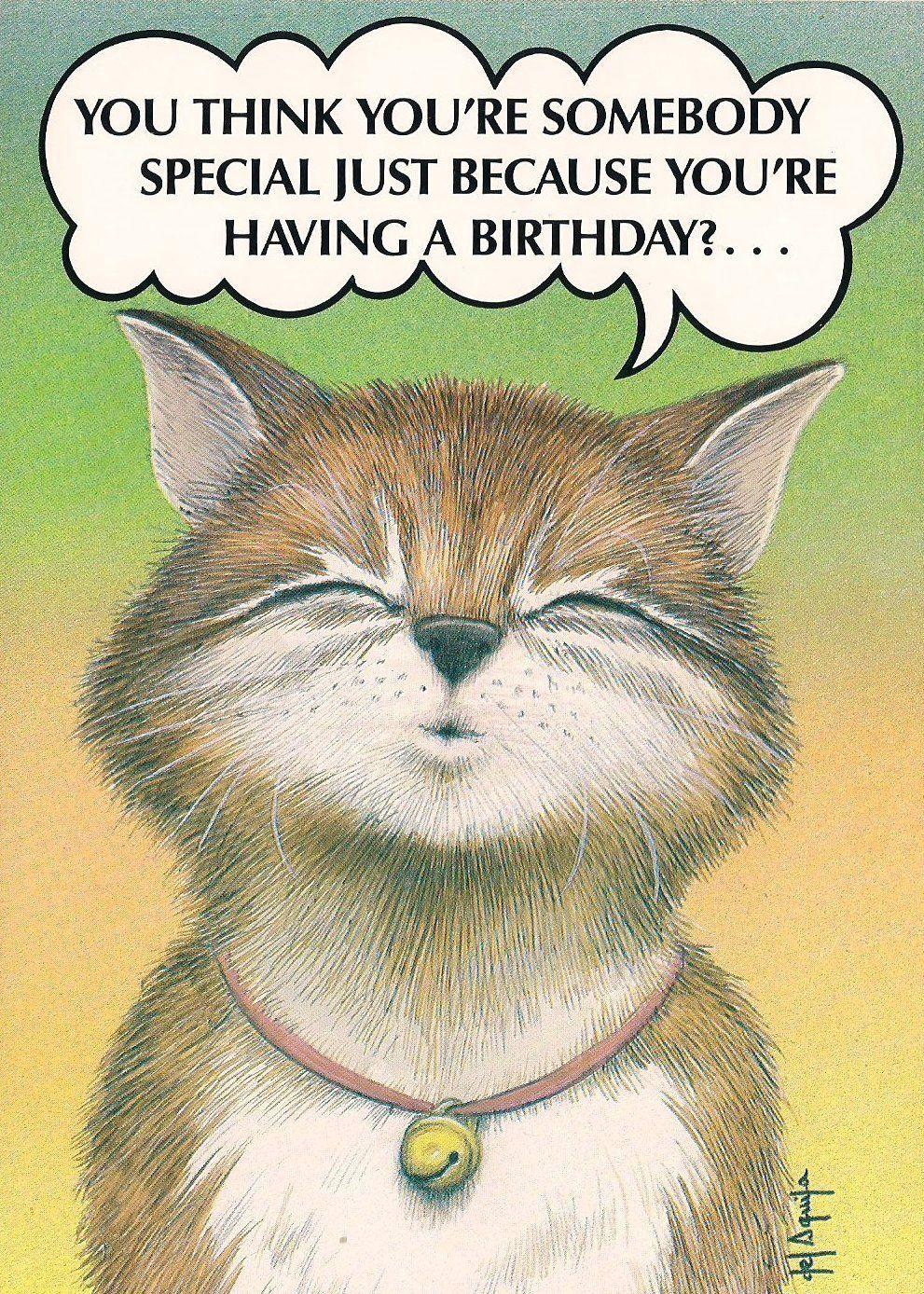 cartoon funny cat kitten puppy bell happy birthday