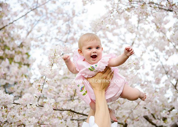 The State Capitol Is The Perfect Place For Spring Portraits With Cherry Blossoms Tree Photography Family Tree For Kids Cherry Blossom