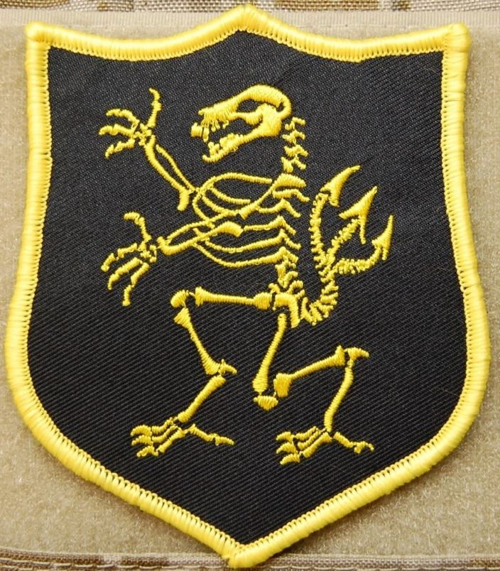 NSWDG Navy SEAL Team 6 DEVGRU Lion Skeleton Gold Squadron Patch ST6