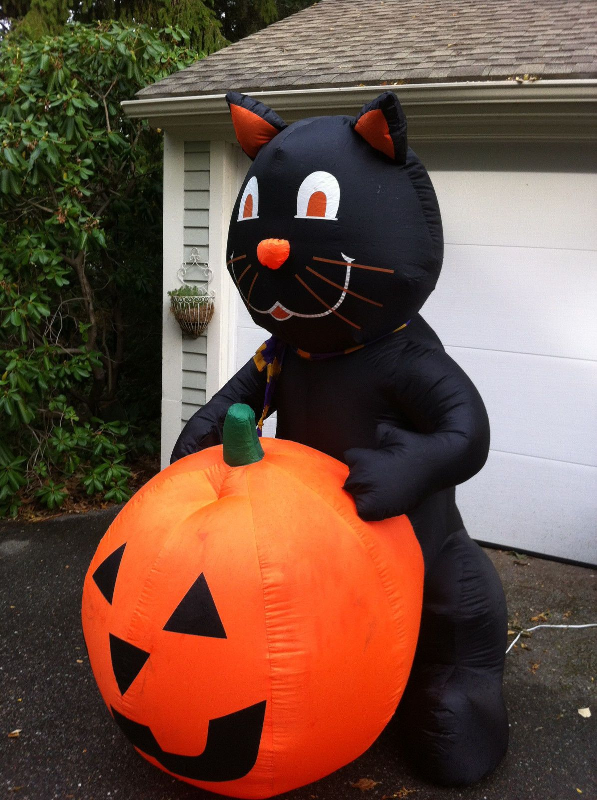 Gemmy Halloween Airblown Inflatable Black Cat Jack O Lantern Pumpkin 7 Tall Jack O Lantern Gemmy Cat Jack