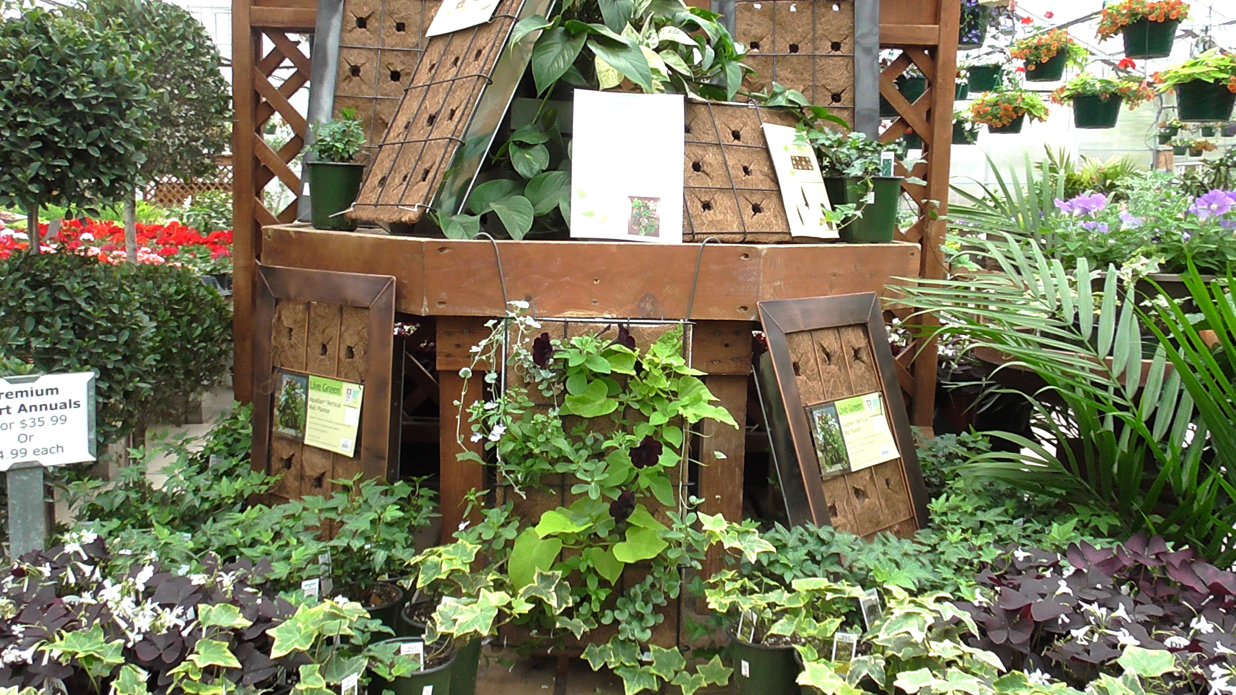 Use vertical gardens as a fun, unique way to spice up your backyard ...