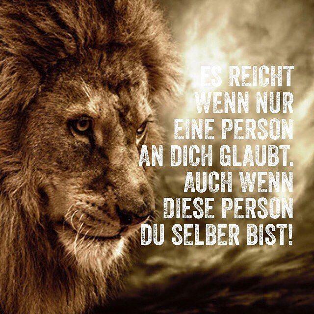 #quotes#quotesoftheday#zitate#echt#wahr#löwe#lions# - thesweetbee_t   Sprüche , Bücher ...