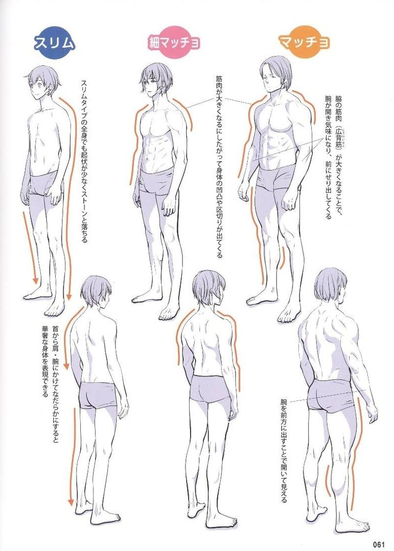 Reference Guide For Drawing Male Muscles 160枚の写真 Vk Figure Drawing Reference Guy Drawing Drawing Reference