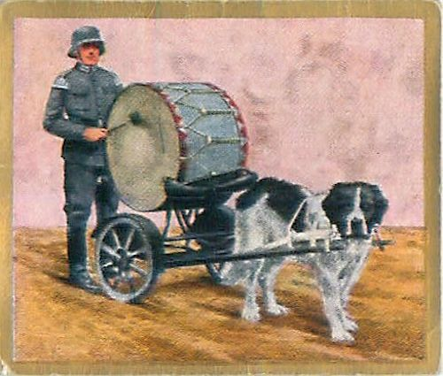 N°243 World War German Soldiers Drum Dog Music Reichswehr Germany WWI 30s CHROMO