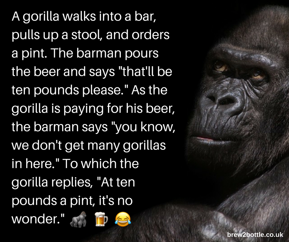 A gorilla walks into a bar... 🦍 🍺 😂 | Drink Related Facts ...