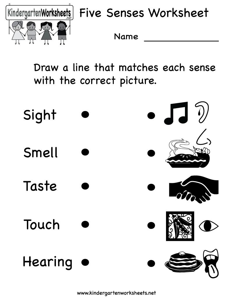 Pin on Teaching Ideas [ 1035 x 800 Pixel ]