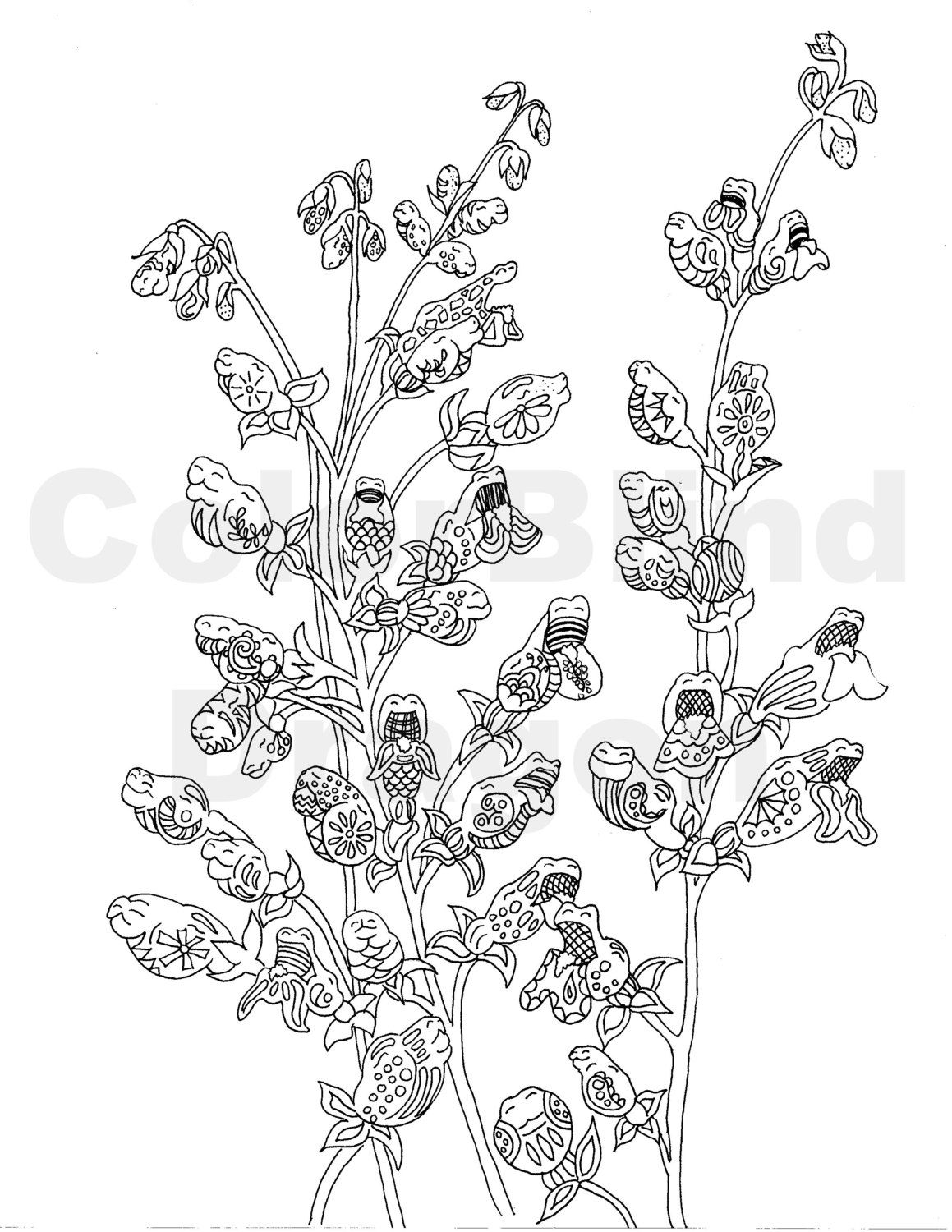 Flowers, coloring pages, dragon coloring page, garden coloring page ...