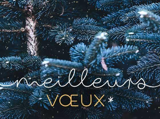 Une Belle Et Heureuse Annee Cartes De Noel Gratuites Cartes De Voeux Virtuelles Carte De Voeux