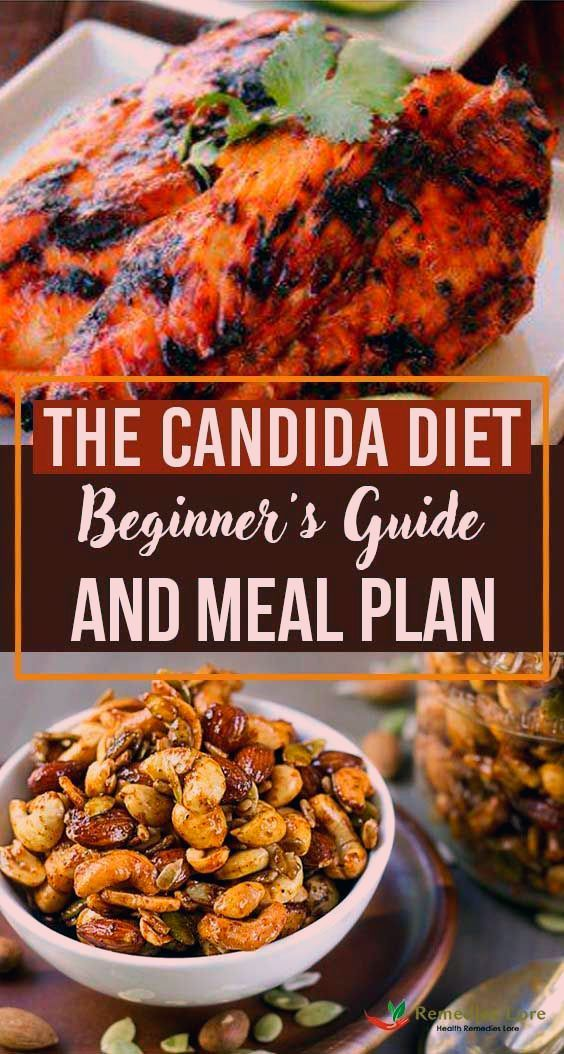 The Candida Diet Beginners Guide and Meal Plan
