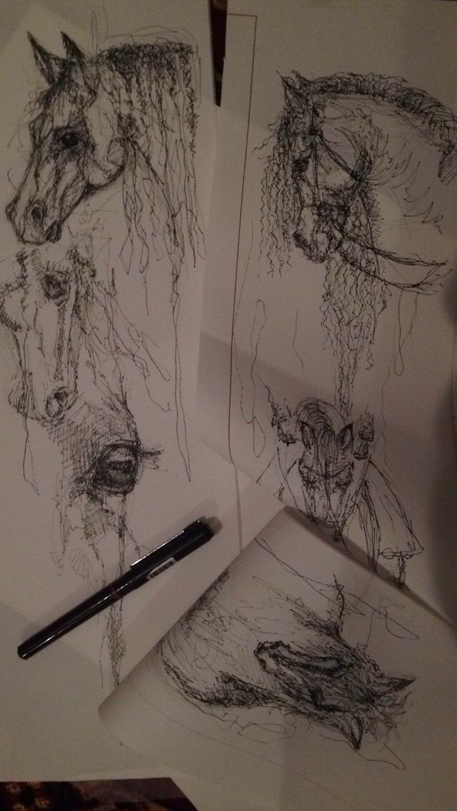 Horse sketch - horse drawing using ink