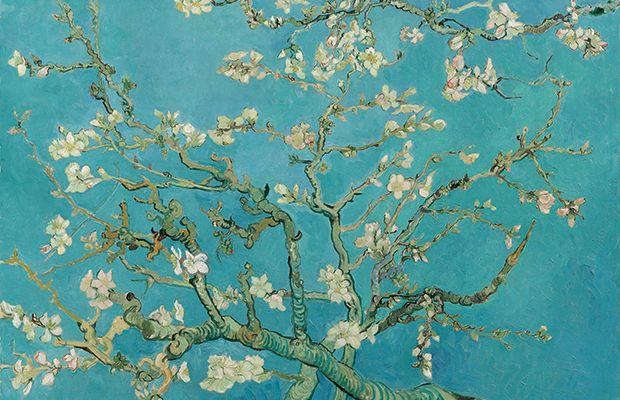 Museu Van Goghlibera centenas de pinturas, esboços e cartas do artista para baixar em alta resolução - Follow the Colours