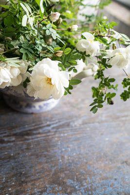 Valkoinen Puutalokoti