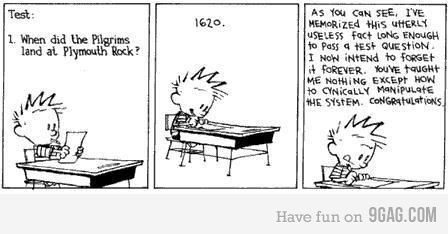 The entire educational system displayed in a single strip.