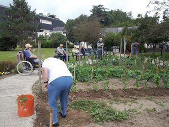 Jardin Therapeutique Le Jardin Est Reconnu Comme Un Outil