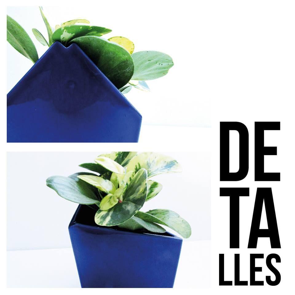 Detalle de la #NETA #azul