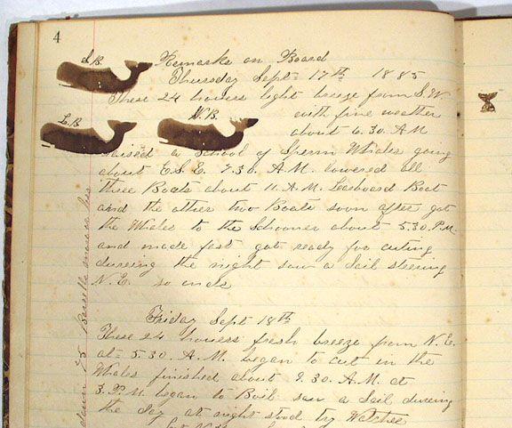 "Original Log Book of the Whaling Schooner ""Pedro Varela"" Handwritten, 1885 - 1886, first year at sea."
