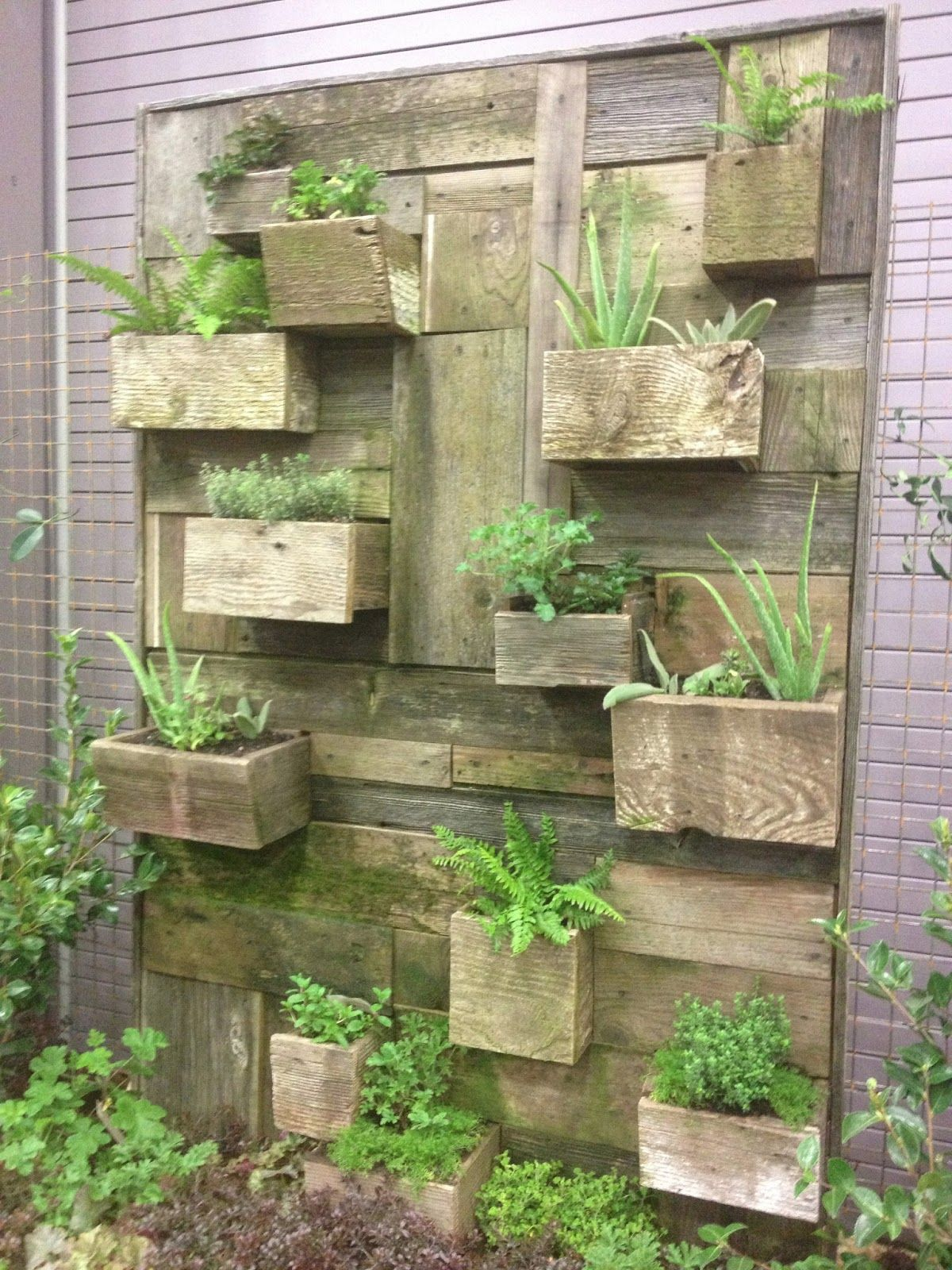 Garden And Patio, Vertical Vegetable Garden House Design With DIY Wall  Mounted Wood Planter Box Ideas ~ Vegetable Garden Design