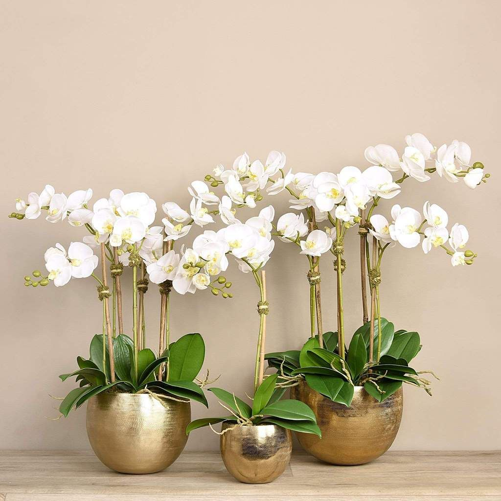 Silk Orchid Arrangements Artificial Orchid Arrangements Fake Orchid Plant Bloomr Ae In 2020 Artificial Orchids Orchid Arrangements Silk Orchids Arrangements