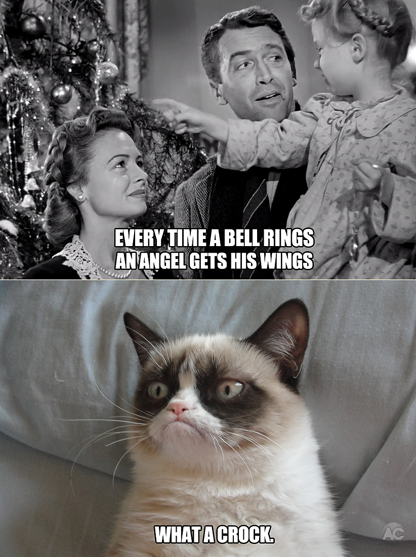 Every Time A Bell Rings.... Grumpy cat, Grumpy cat