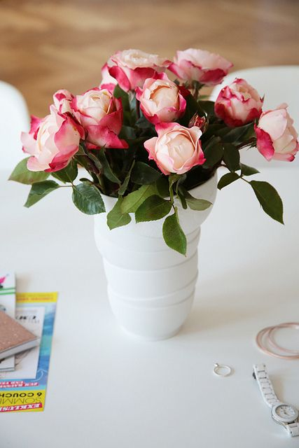 Roses - photo Holly Becker blogged today on haus maus