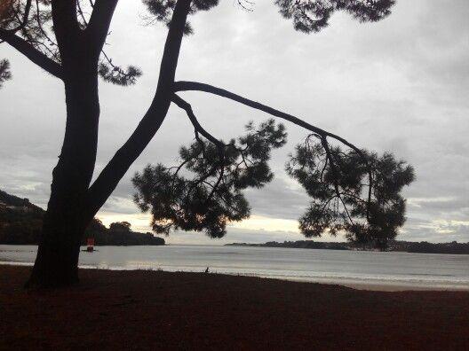 Playa cabañas