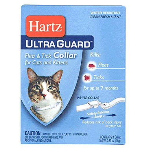 Hartz Ultra Guard Flea And Tick Collar For Cats And Kittens Fresh Scent Kitten Collars Cat Fleas Ticks