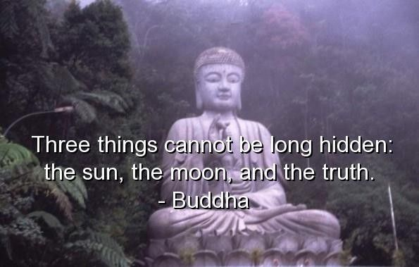 Charmant Funny Words Of Wisdom Sayings | Buddha Quotes Sayings Quote Wise Wisdom  Deep   Words On