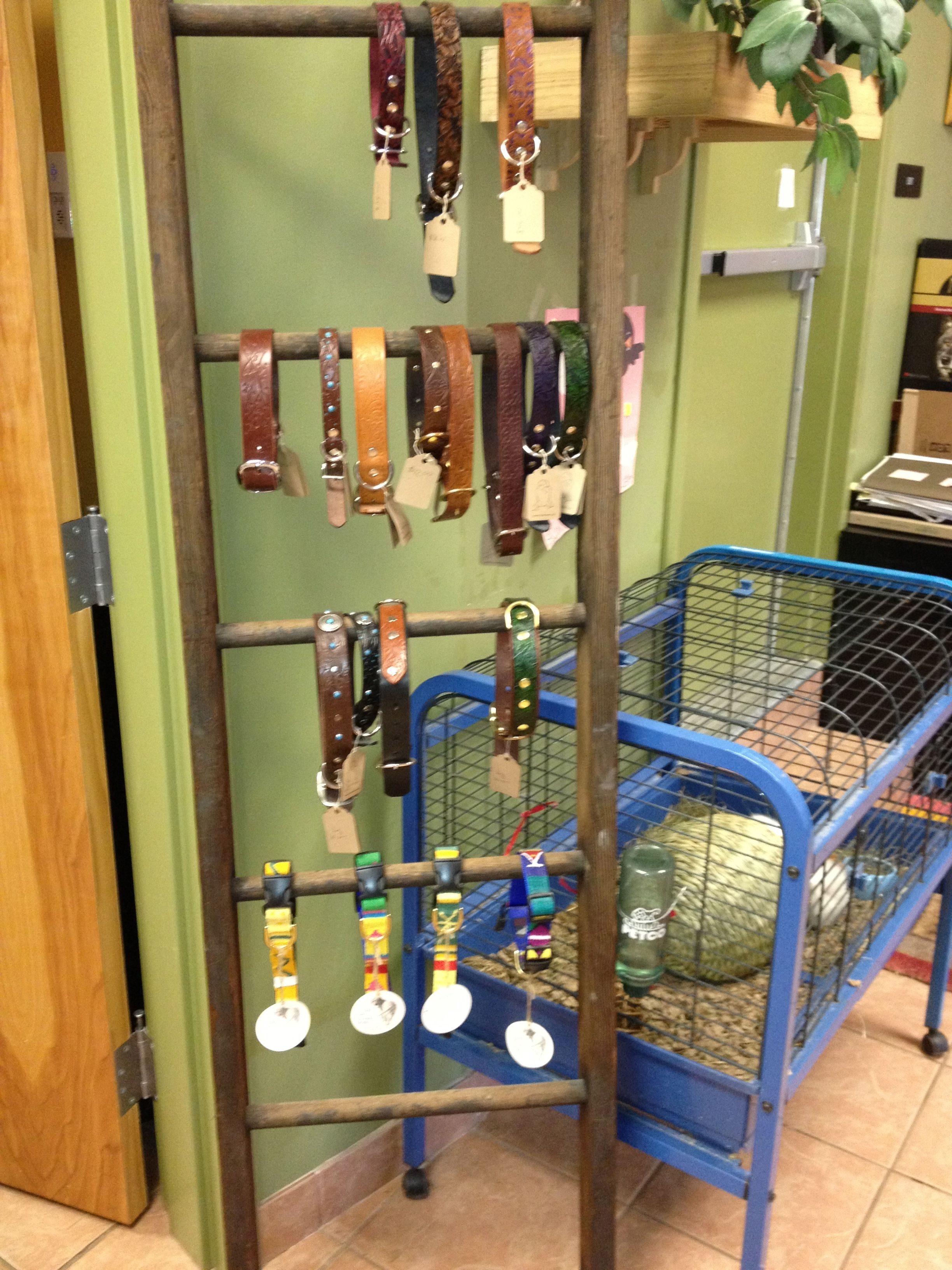 We Found This Ladder In The Back Alley One Day And Cleaned Up To Make A Great Display For Collars And Leashes Pet Store Display Dog Collar Display Pet Store