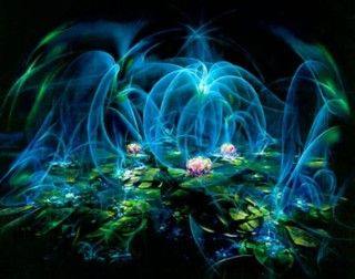 Akiane Kramarik- Water Lily