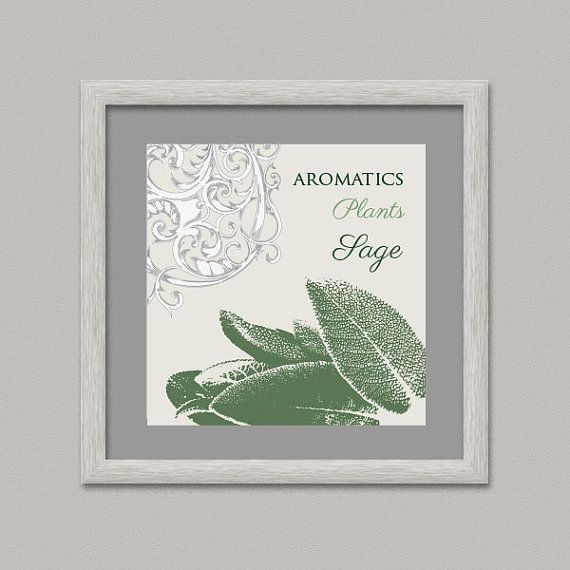 Aromatics Plants SAGE Wall Decor Printable Digital by OopsyIdeas