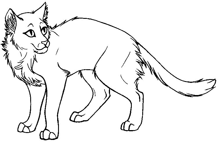 Warrior Cat Coloring Page Warrior Cat Drawings Warrior Cat