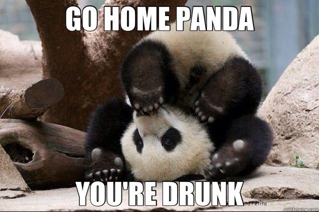 Funny Drunk Meme Pictures : Drunk panda meme google search animals pinterest panda
