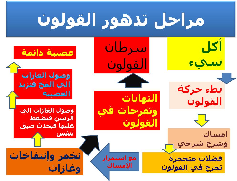 Pin By Dr Mohammed Abdelsalam On دايت كير في سلطنة ع مان Diet Care Health Fitness Nutrition Loose Weight Fitness Nutrition