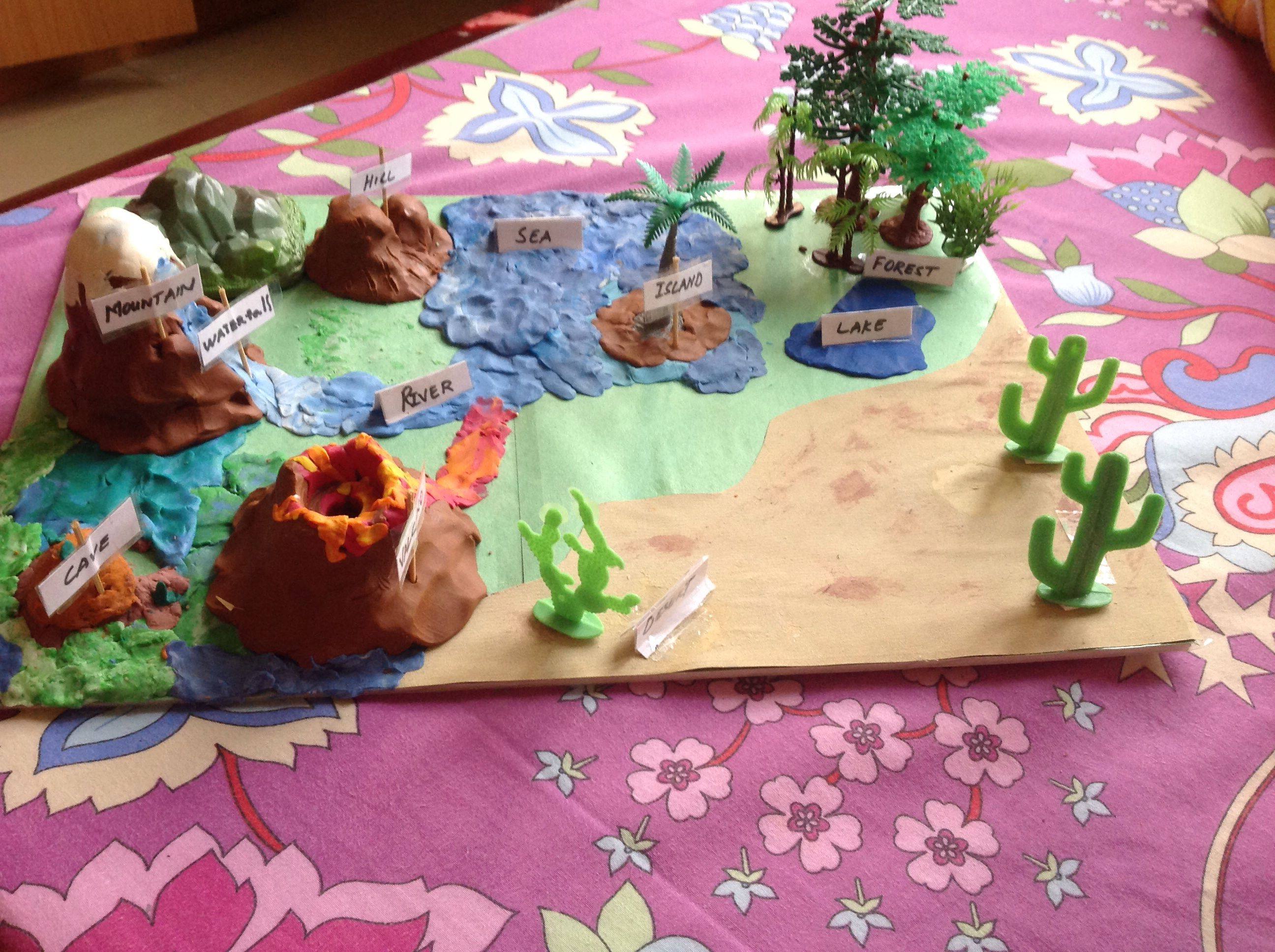 2nd Grade Landform Project