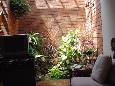 Plantas para jardines interiores fotos de dise o y for Plantas de interiores