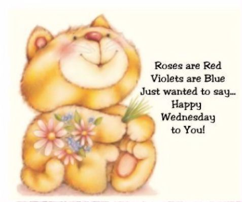 Happy Wednesday To You Happy Wednesday Good Morning Image Quotes Roses Are Red Violets Are Blue