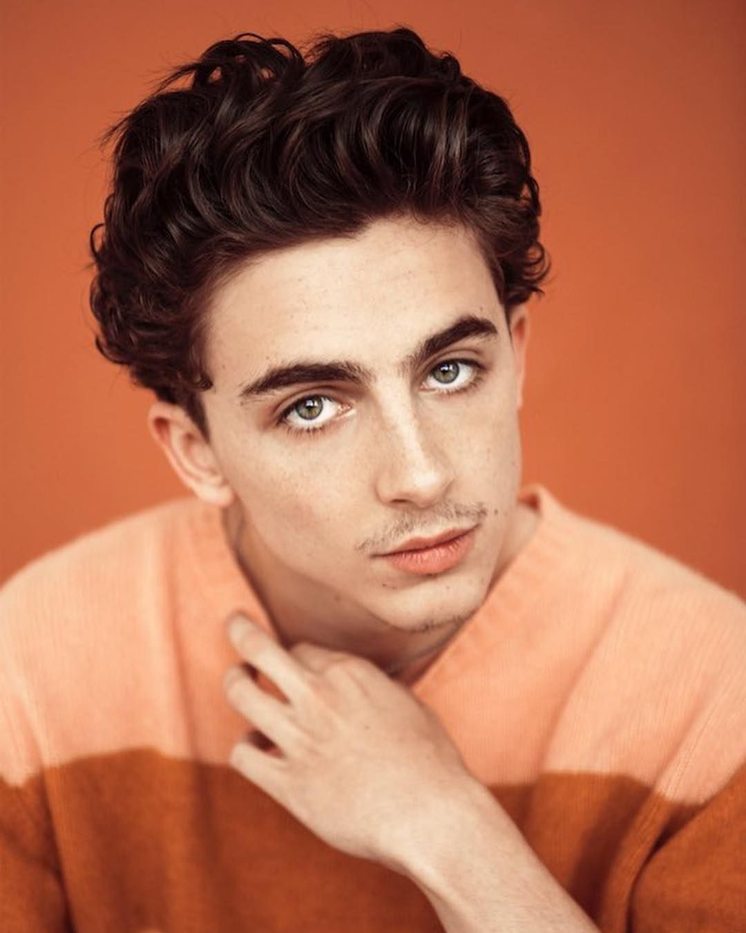 Timothee For Timeout By Austin Hargrave Timotheechalamet