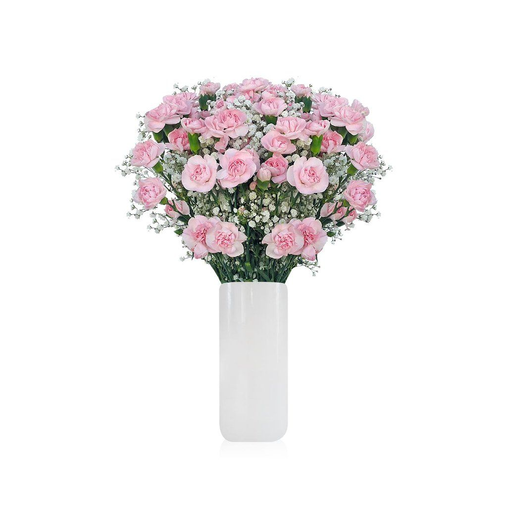 Minicarnation & Baby breath Bouquet Pack 6 | Mini Carnation and ...