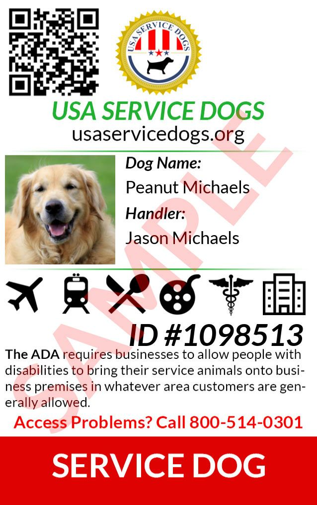 Usa Service Dog Registry Service Dog Registration And Related Products Service Dog Registration Service Dogs Emotional Support Dog