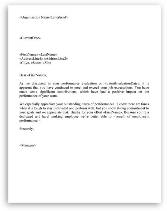 Employee Appointment Letter - which you can use while issuing an - employee termination letter