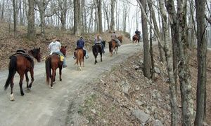 OneHour Horseback Trail Ride with Ride a Rescue at Winterfrost Farm Up to 50 Off Three O OneHour Horseback Trail Ride with Ride a Rescue at Winterfrost Farm Up to 50 Off...