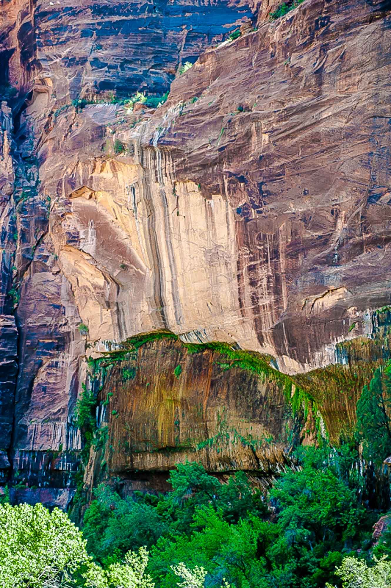 grand canyon hanging gardens Google Search Grand