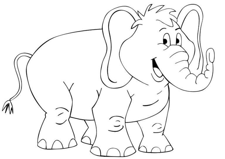 Mewarnai Gambar Binatang Hewan Dan Tumbuhan Untuk Anak Tk Paud